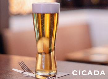cicada-beer