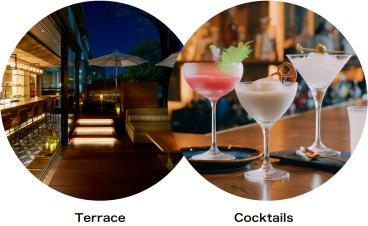 Terrace & Cocktails